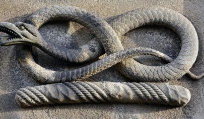 Du Serpent