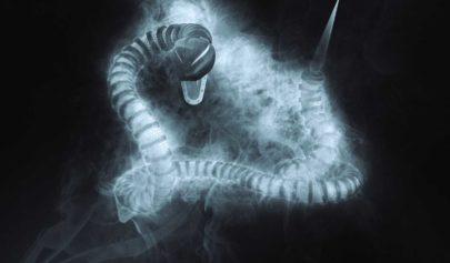 Le symbolisme du serpent