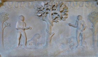 Différenciation sexuelle dans la Genèse