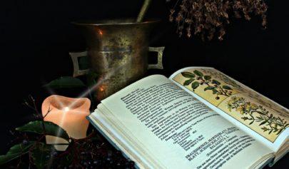Le Mutus Liber par Magophon 1
