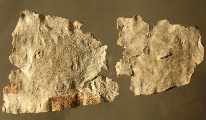 Les tablettes d'exécration gallo-romaines par Fredericus Coriarius