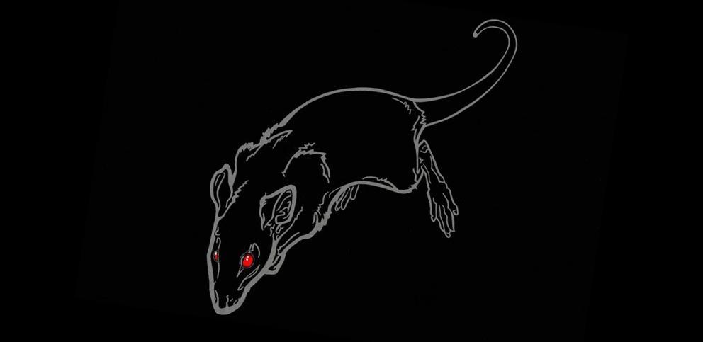 Rat Holes : Explorations Sénestres